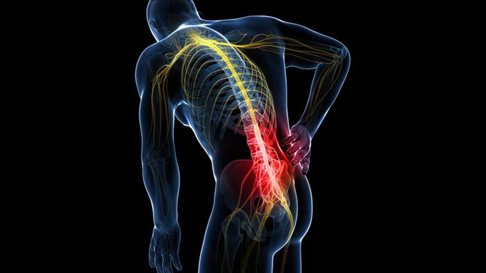 Spinal injuries, Spinal cord, Umesh Srikantha, Nerves, Body functions, Urinary tract system, Skeletal system, Spine injury, Abdominal pain, Fever with chills, Micturition, Bowels., Skin, Respiratory system, Pneumonia, Autonomic function, CMI Hospital, Healthy spine.