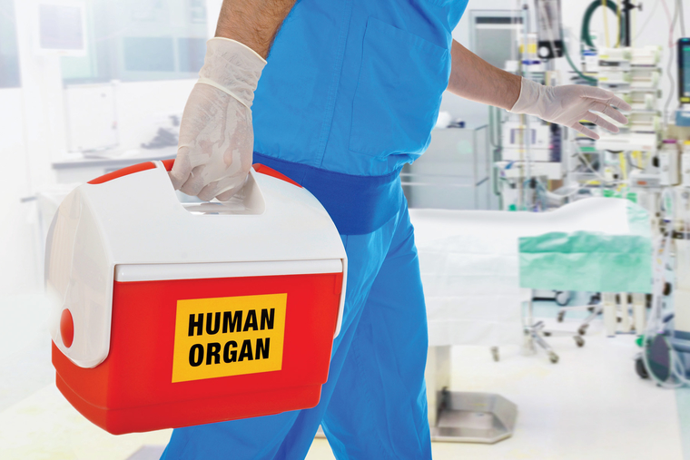 Time to adopt the 'opt out model' of organ donation?