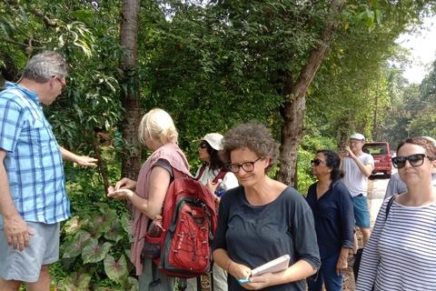 Ayurveda, study of Indian herbs attract USA, UK, German, Australian Ayurveda practitioners to India